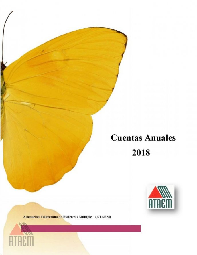 CUENTAS ANUALES 2018 APROBADAS EN ASAMBLEA GENERAL